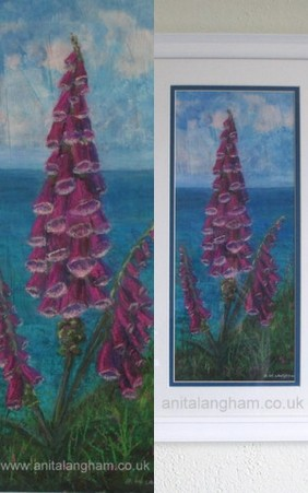 Foxgloves on Cornish Cliffs Boscastle flower painting