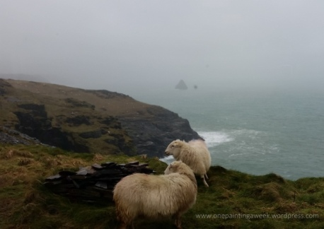 Sheep on Cornish Cliffs.jpg